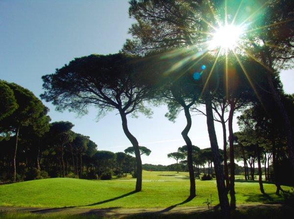 visithuelva golfnuevoportil