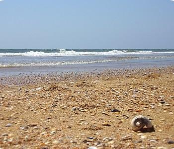 visithuelva playa de el espigon