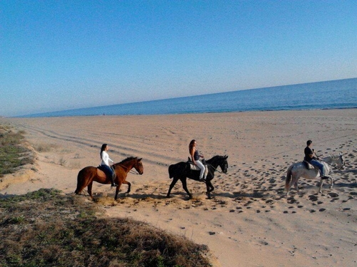 visithuelva paseos a caballo mazagon