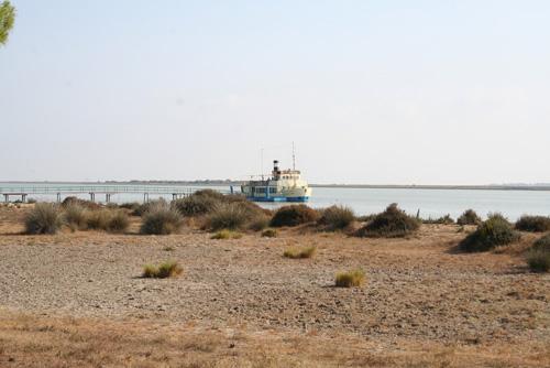 visithuelva visita barco donana